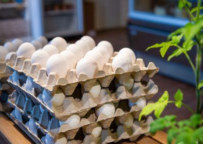 Ekologiska KRAV-ägg